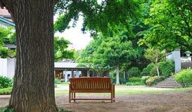 Σκηνή του πάγκου του πάρκου στοκ εικόνα