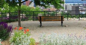 Σκηνή του Χάμιλτον, Καναδάς, κέντρο πόλεων με τα λουλούδια στο πρώτο πλάνο 4K απόθεμα βίντεο