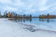 Σκηνή φθινοπώρου στην όχθη της λίμνης σε de Kempervennen, βόρεια Βραβάνδη, Στοκ φωτογραφίες με δικαίωμα ελεύθερης χρήσης