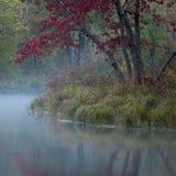 Σκηνή φθινοπώρου της Misty πριν από την ανατολή στοκ εικόνα