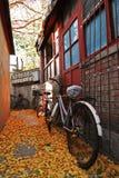 σκηνή φθινοπώρου Στοκ εικόνες με δικαίωμα ελεύθερης χρήσης