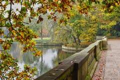 Σκηνή φθινοπώρου Στοκ εικόνα με δικαίωμα ελεύθερης χρήσης
