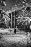 Σκηνή χιονιού Στοκ Εικόνες