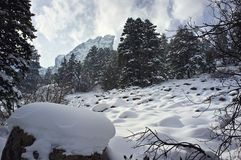 Σκηνή χιονιού Στοκ φωτογραφία με δικαίωμα ελεύθερης χρήσης