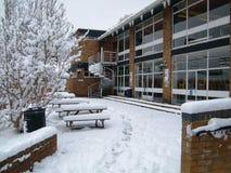 Σκηνή χιονιού Στοκ εικόνα με δικαίωμα ελεύθερης χρήσης
