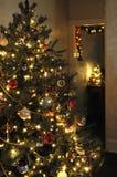 Σκηνή χριστουγεννιάτικων δέντρων Στοκ εικόνα με δικαίωμα ελεύθερης χρήσης