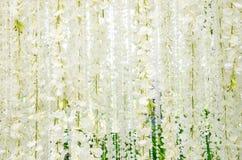 Σκηνικό για τα γαμήλια άσπρα λουλούδια Στοκ εικόνες με δικαίωμα ελεύθερης χρήσης