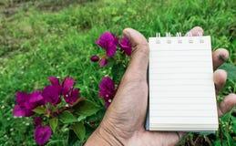 Σκηνικό λουλουδιών της Λευκής Βίβλου που χρησιμοποιείται για τη λήψη σημειώσεων Στοκ Εικόνες
