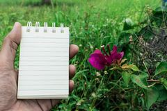 Σκηνικό λουλουδιών της Λευκής Βίβλου που χρησιμοποιείται για τη λήψη σημειώσεων Στοκ φωτογραφίες με δικαίωμα ελεύθερης χρήσης