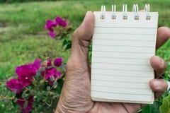 Σκηνικό λουλουδιών της Λευκής Βίβλου που χρησιμοποιείται για τη λήψη σημειώσεων Στοκ Φωτογραφία