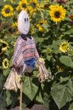 Σκιάχτρο που φρουρεί τους ηλίανθους στο βοτανικό κήπο της Αδελαΐδα Στοκ εικόνα με δικαίωμα ελεύθερης χρήσης