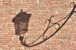 Σκιά λαμπτήρων στο τουβλότοιχο Στοκ Φωτογραφίες