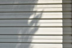 Σκιά δέντρων στην άσπρα louver σιδήρου σύσταση και το υπόβαθρο πορτών στοκ εικόνες