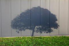 Σκιά δέντρων στον γκρίζο τοίχο μετάλλων Στοκ Φωτογραφία