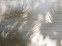 Σκιά μέσω της κουρτίνας το πρωί στοκ φωτογραφίες