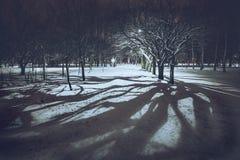 Σκιά στο πάρκο nigth στοκ φωτογραφία