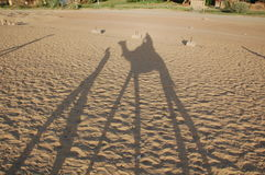 Σκιά της καμήλας Στοκ φωτογραφία με δικαίωμα ελεύθερης χρήσης
