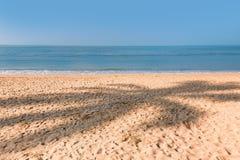 Σκιά του φοίνικα καρύδων στην άμμο Στοκ Φωτογραφία