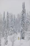 Σκιέρ Freeride στο δάσος Στοκ φωτογραφίες με δικαίωμα ελεύθερης χρήσης
