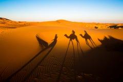 Σκιές βραδιού ενός τροχόσπιτου καμηλών στη Σαχάρα στοκ φωτογραφίες