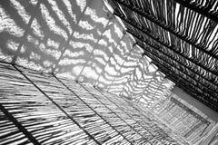 Σκιές γραπτές Στοκ Φωτογραφίες