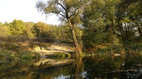Σκιές και ποταμός Στοκ εικόνες με δικαίωμα ελεύθερης χρήσης