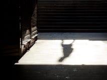 Σκιές και σκιαγραφίες πόλεων Στοκ φωτογραφίες με δικαίωμα ελεύθερης χρήσης