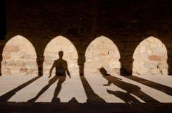 Σκιές κοριτσιών και γατών ατόμων ουρών νεράιδων Στοκ εικόνες με δικαίωμα ελεύθερης χρήσης
