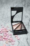 Σκιές ματιών, makeup μάτι, καλλυντικά έννοιας Στοκ εικόνα με δικαίωμα ελεύθερης χρήσης