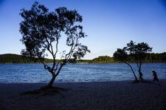 Σκιές στη λίμνη Στοκ Φωτογραφίες
