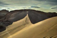 Σκιές της ερήμου Στοκ Φωτογραφίες