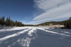 Σκιές των δέντρων στην παγωμένη λίμνη ηχούς Στοκ φωτογραφία με δικαίωμα ελεύθερης χρήσης