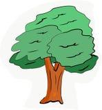 Σκιές των πράσινων φύλλων φύσης δέντρων τέχνης απεικόνισης της διανυσματικής περίληψης χρώματος φωτογραφιών πράσινης ελεύθερη απεικόνιση δικαιώματος