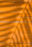 Σκιές των φύλλων στο κίτρινο πηχάκι Στοκ Εικόνα