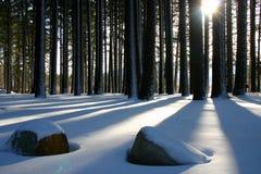 σκιές Στοκ εικόνα με δικαίωμα ελεύθερης χρήσης
