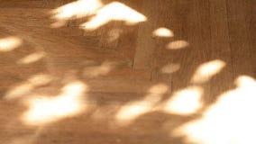 σκιές φιλμ μικρού μήκους