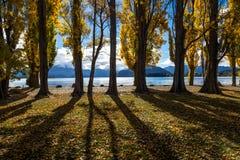 Σκιές Wanaka λιμνών Στοκ Φωτογραφία