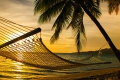 Σκιαγραφία αιωρών με τους φοίνικες σε μια παραλία στο ηλιοβασίλεμα Στοκ φωτογραφία με δικαίωμα ελεύθερης χρήσης