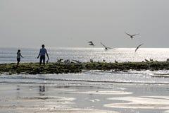 Σκιαγραφία από τον πατέρα με το παιδί που ταΐζει τα πουλιά στοκ φωτογραφία με δικαίωμα ελεύθερης χρήσης