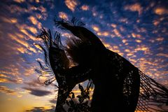 Σκιαγραφία γυναικών που έχει τη διασκέδαση στον ουρανό ηλιοβασιλέματος πτήσης μανικιών στοκ φωτογραφίες με δικαίωμα ελεύθερης χρήσης