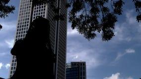 Σκιαγραφία γυναικών που μιλά με τον πύργο κινητών τηλεφώνων και επιχειρήσεων φιλμ μικρού μήκους