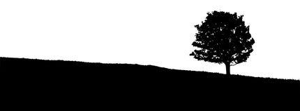Σκιαγραφία ενός δέντρου στο λιβάδι Στοκ Εικόνα