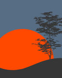 Σκιαγραφία ενός δέντρου Στοκ Φωτογραφίες