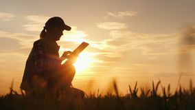 Σκιαγραφία ενός αγρότη που εργάζεται με μια ψηφιακή ταμπλέτα στον τομΠστοκ φωτογραφία με δικαίωμα ελεύθερης χρήσης