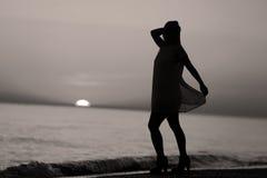 Σκιαγραφία ενός γυναικείου χορού Στοκ Εικόνα