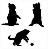 Σκιαγραφία ενός διασκεδάζοντας γατακιού Στοκ Εικόνα