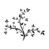 Σκιαγραφία ενός νέου δέντρου Στοκ εικόνες με δικαίωμα ελεύθερης χρήσης