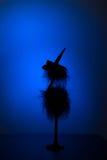 Σκιαγραφία ενός πουλιού σε ένα καπέλο Στοκ Εικόνες