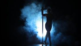 8of23 σκιαγραφία ενός προκλητικού θηλυκού χορού πόλων απόθεμα βίντεο