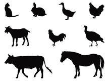 Σκιαγραφία ζώων αγροκτημάτων Στοκ Φωτογραφία